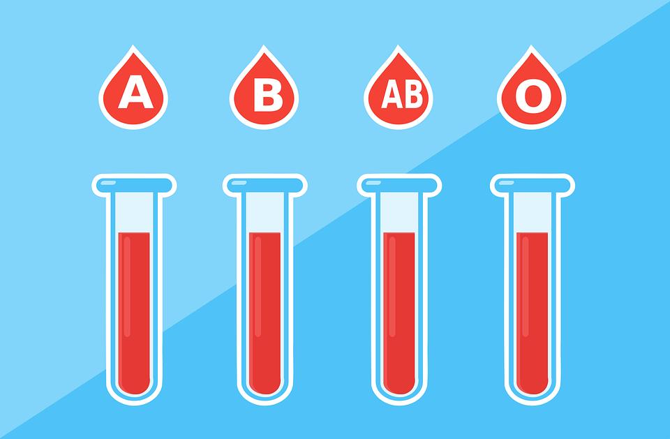 La Donación de Sangre organizada por la Comparsa de Piratas consigue 52 donaciones este año
